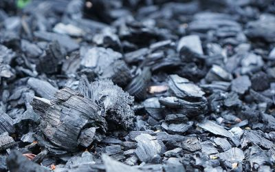 What Is Binchotan Charcoal (White Charcoal)?